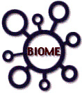 Figure 1 BIOME logo (14KB)