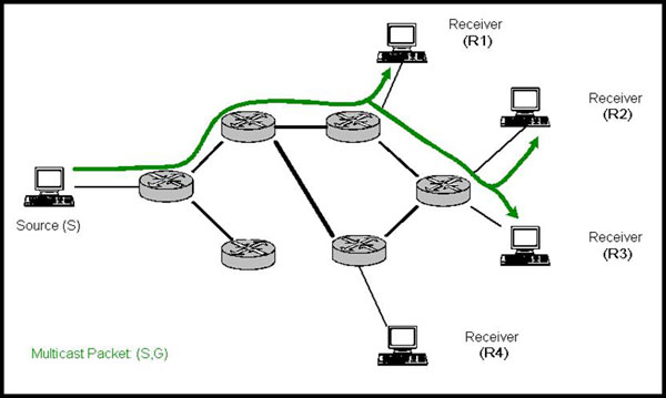 diagram (28KB): Figure 5: Copies of packets only made when necessary over multicast