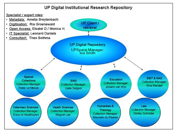diagram (63KB) : Figure 5 : UP digital research repository management team
